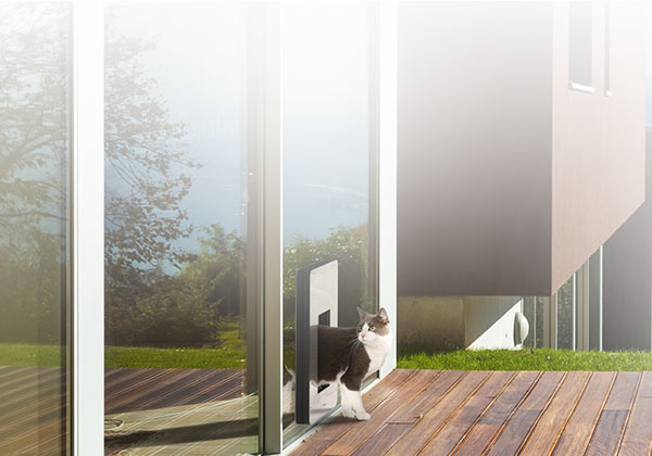 comfort - petWALK cat doors. Insulated and safer that cat flaps.