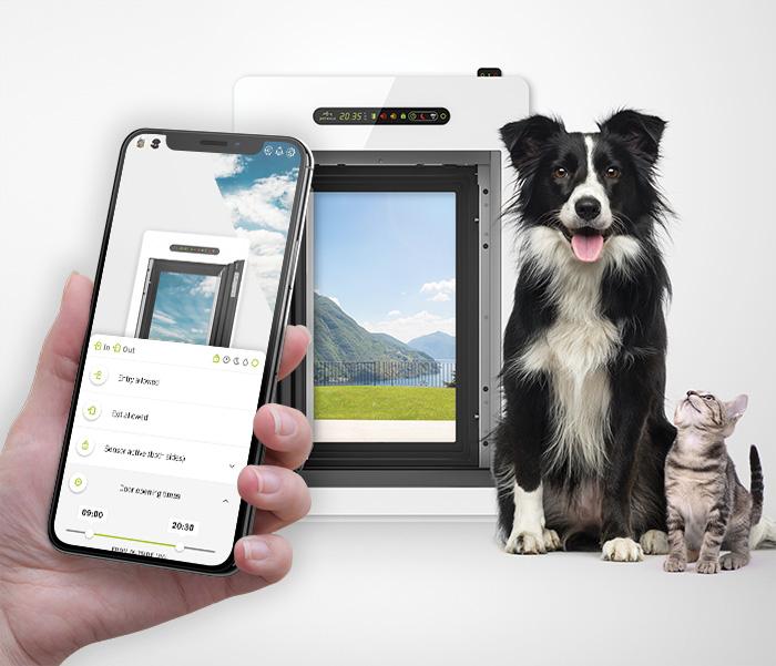 Hund und Katze mit petWALK Tür und App.